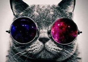 Psychedelic cat with glasses